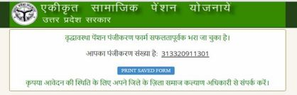 Vridha Pension registration number